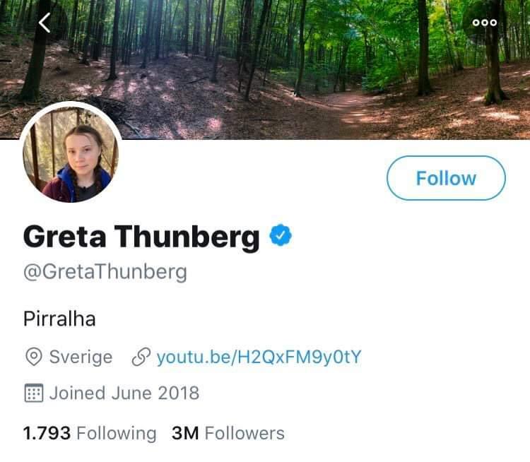 twitter_greta
